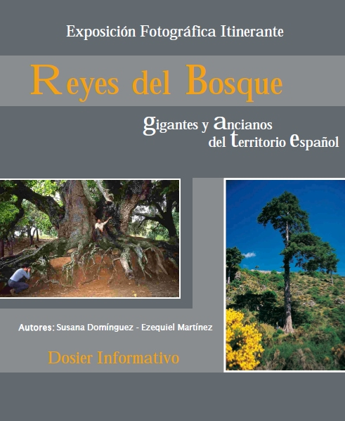portada exposicion Reyes del Bosque
