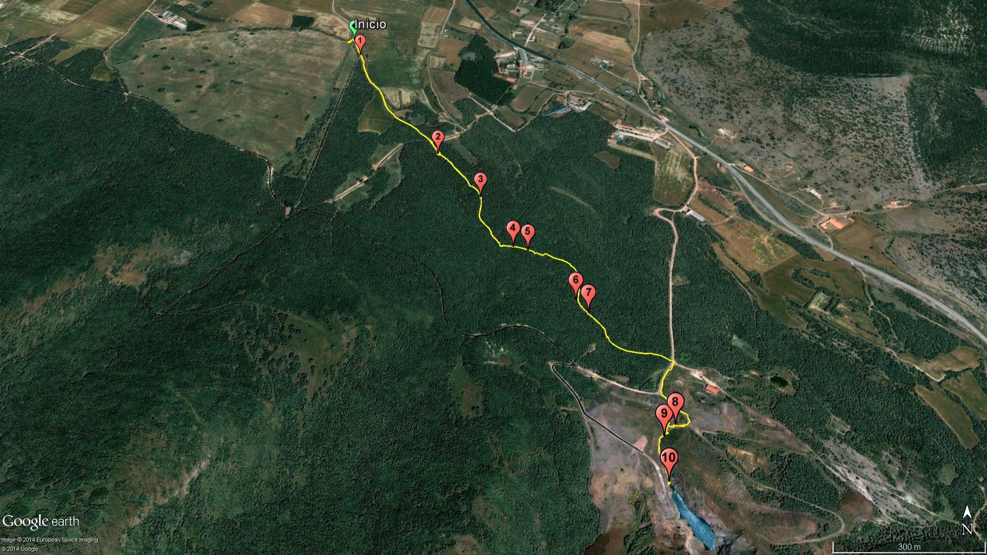 Ruta del Bio Bosque